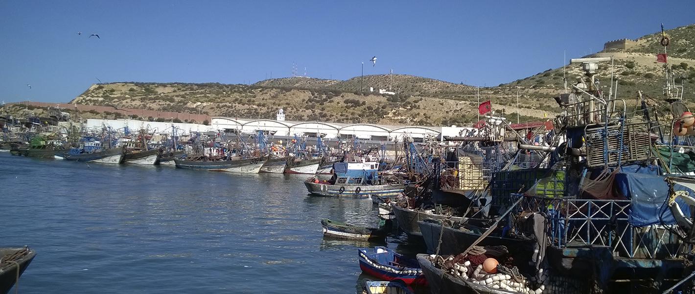 Halieutis 2017 Agadir