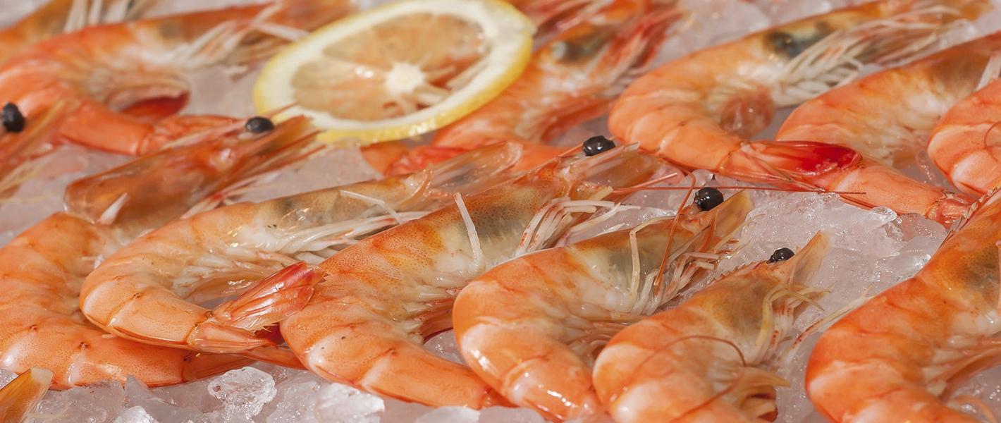 Commission technique crevettes et crustacés cuits